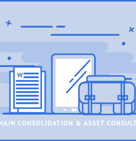 Domain Consolidation and Asset Consultation
